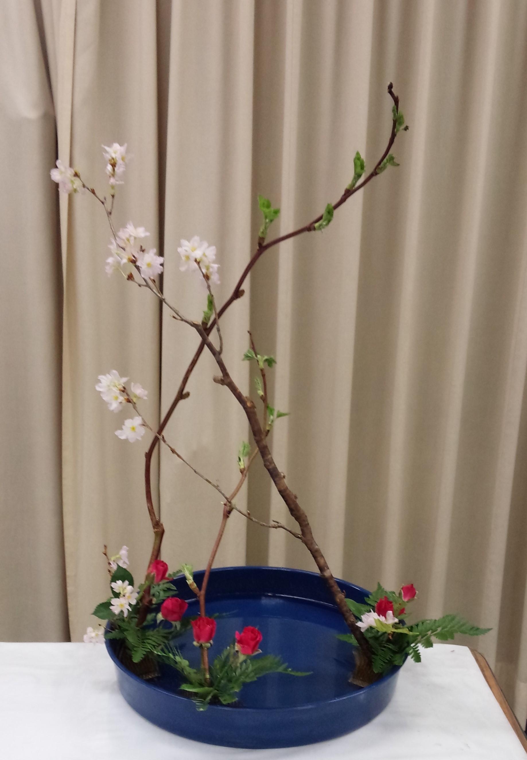 花奏20150218
